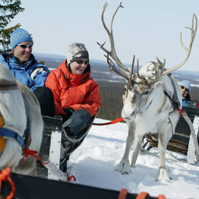 Reindeer headers safari 2 h