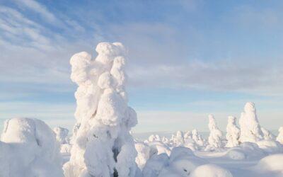 Lumikenkäilyä Luostolla